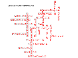 cell division crossword by bigarthur teaching resources tes