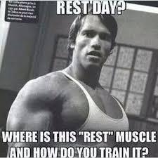 Funny Gym Meme - tatiana koshman ifbb pro this one of the funniest gym meme i ve