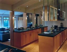 hanging kitchen cabinet hanging kitchen cabinet exle of a trendy open concept kitchen