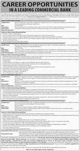 Sales Coordinator Job Description Treasury Sales Jobs Resume Cv Cover Letter