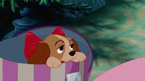 10 didn u0027t lady tramp disney