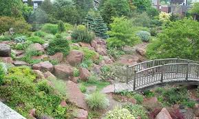 how to make a small rock garden large and beautiful photos