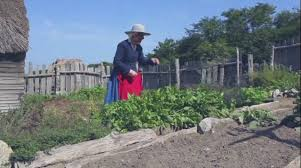 field trip plimoth plantation