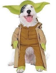Lion Halloween Costumes Dogs Dog Costume Ebay