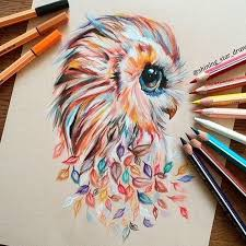 best 25 owl drawings ideas on pinterest owl sketch animal