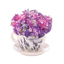 Lavender Home Decor Lavender Fields Teacup Planter Wholesale At Koehler Home Decor