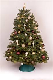 9 christmas tree 8 5 9 ft noble fir trees green valley christmas trees