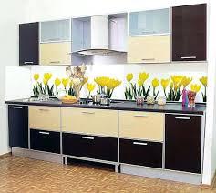 Kitchen Cabinets India Kitchen Wall Cabinets With Glass Doors India Kitchen Glass Door