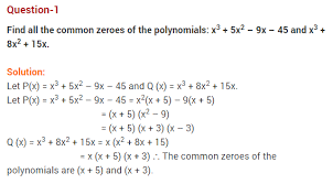 polynomials cbse class 10 maths chapter 2 extra questions