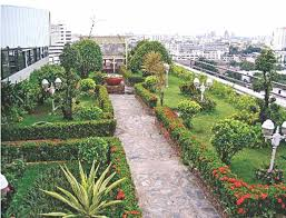 roof garden plants rooftop gardening days of babylon to our current life the daily