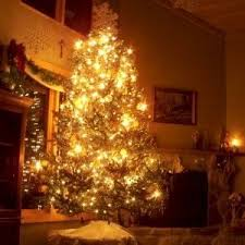 List Of German Christmas Decorations by 25 Best Germany Where In The World Lesson Images On Pinterest