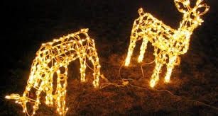 dream lighted christmas reindeer outdoor decorations 24 photo