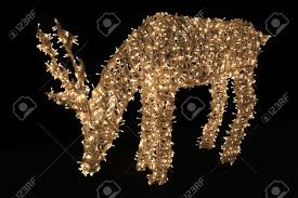 Deer Christmas Lights Deer Made Of Christmas Lights Against Black Background Stock Photo