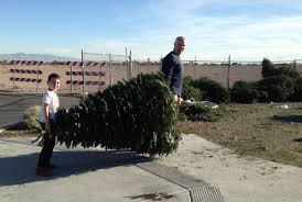 annual christmas tree recycling program summerlin blog