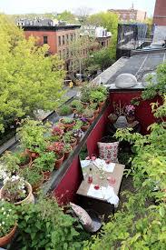 square foot gardening flowers my brooklyn garden rehab 1 000 square feet season two gardenista
