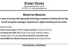 Example Of Resume Summary by Example Of Resumes Resume Example