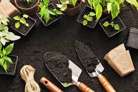Gifts For Vegetable Gardeners by 11 Brilliant Gifts For The Gardener In Your Life Mental Floss