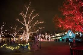 when does the lights at the toledo zoo start 15 christmas light displays in ohio that are pure magic toledo zoo