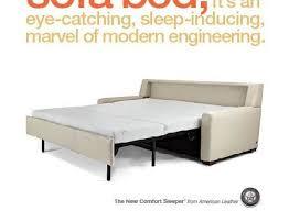 Most Comfortable Sleeper Sofas Popular Living Rooms Great Comfortable Sleeper Sofa Best Ideas