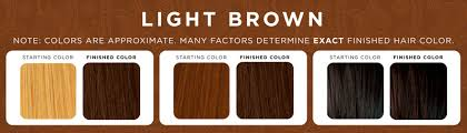 light golden brown hair color chart henna on color treated hair in 2016 amazing photo haircolorideas org