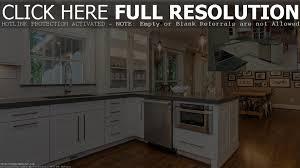 cool panda kitchens reviews photos best inspiration home design