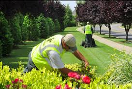 spring landscaping spring is a great time to consider sustainable landscape practices