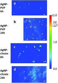 si e r ion rhone alpes visualization quantification and coordination of ag ions released