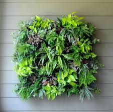 wall ideas pamela crawford living wall planter w liner hanging