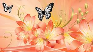flowers dramatic lilies flowers butterfly summer orange
