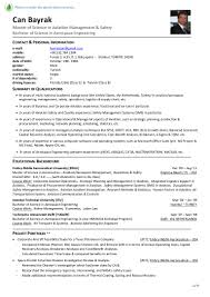 Sample Resume Objectives Of Call Center Agent by Curriculum Vitae