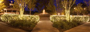 outdoor christmas lights for bushes well suited ideas netted christmas lights target tree outdoor for