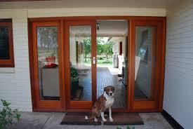 French Door With Pet Door Door Installing Dog Door What You Should Know Diy Pet For French