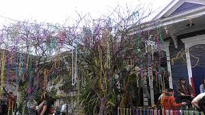 mardi gras tree decorations 24 things to do with mardi gras new in nola