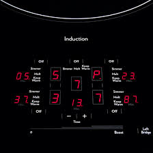 Induction Vs Radiant Cooktop Induction Cooktop 36