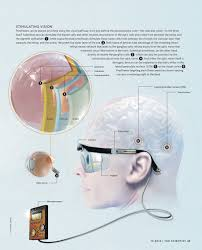 The Blind Spot In The Eye Is Due To The Bionic Eye The Scientist Magazine