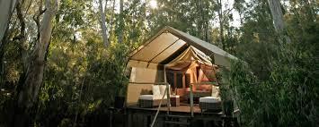 paperbark camp