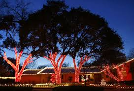 wrapped tree lights dallas landscape lighting