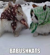 Freezing Meme - this week s top 10 internet memes alaska commons