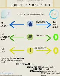 Why Dont Americans Use Bidets 9 Best Bidet Benefits Images On Pinterest Toilets Environment