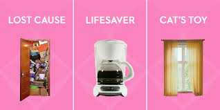 honest names for household items real names things in your home