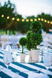 Topiaries Wedding - table top topiaries create a clean crisp centerpiece for an