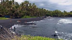 black sand beach big island shark attack near punalu u beach on hawaii island