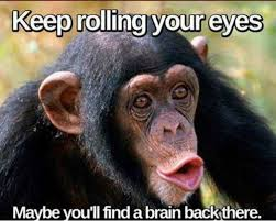 Funny Monkey Memes - 10 funny monkey memes for your face