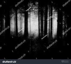 mystical halloween background man walking in a dark forest with fog on halloween stock photo