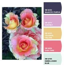 paint colors from chip it by sherwin williams color me chipped