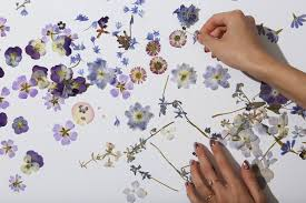 pressed flowers pressed flower tips and tricks from our studio paperless post