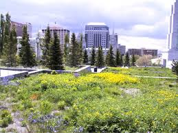greenroofs com projects church of jesus christ of latter day