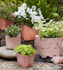 Pinterest Gardening Crafts - 71 best gardening projects u0026 ideas images on pinterest gardening