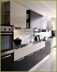 Kitchen Cabinet San Francisco European Kitchen Cabinets San Francisco Home Design Ideas