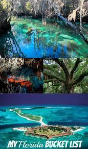 Florida Natural Attractions images Dive computers vs dive tables summer fun pinterest florida jpg
